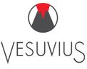 Vesuvius U S A Corporation