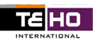Teho International Logo