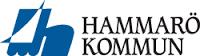 "Academic Work ""Studerande kommunvägledare till Hammarö kommun"""