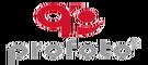 Profoto Digital Services Pte Ltd Logo
