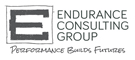 ENDURANCE CONSULTING GROUP